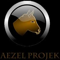 Aezelproject